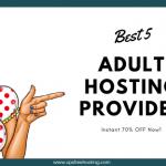Adult Friendly Web Hosting Providers
